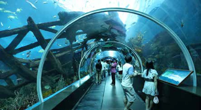 Top Attractions in Sentosa Island