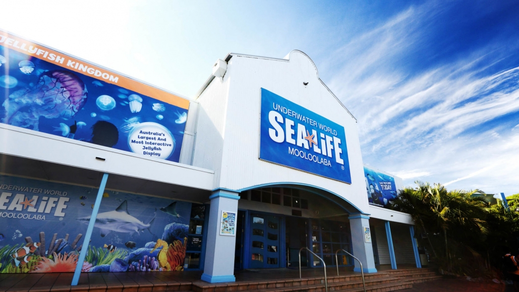 Our Nebula Multi intelligent luminaires are shining brightly at SEA Life Mooloolaba